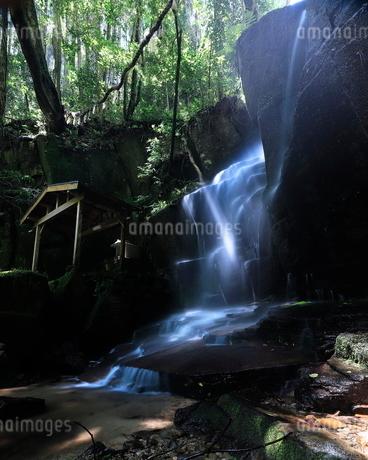 青葉の滝 日本 奈良県 宇陀市の写真素材 [FYI03391932]