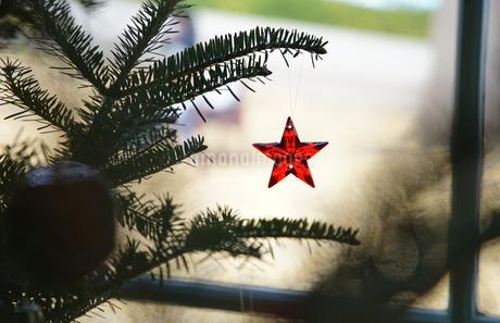 クリスマスツリーに飾られた赤いクリスタルの星の写真素材 [FYI03391946]