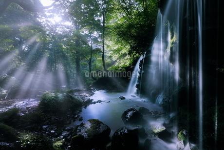 猿壺の滝 日本 兵庫県 新温泉町の写真素材 [FYI03391956]