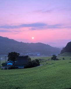 長谷の棚田 日本 大阪府 能勢町の写真素材 [FYI03391961]
