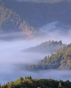 小入谷 日本 滋賀県 高島市の写真素材 [FYI03391963]