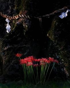 大阪府 豊能郡 能勢町 野間稲地 日本の写真素材 [FYI03391975]