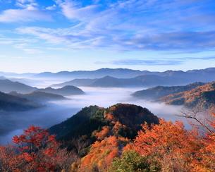 小入谷 日本 滋賀県 高島市の写真素材 [FYI03391978]