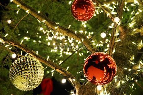 クリスマスツリーの飾りの写真素材 [FYI03391994]