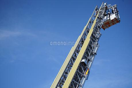 出初め式のはしご訓練の写真素材 [FYI03392001]