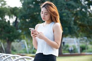 公園でスマホを見ている女性の写真素材 [FYI03392068]