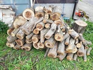 田舎暮らし 木こり 薪ストーブ キャンプの写真素材 [FYI03392075]