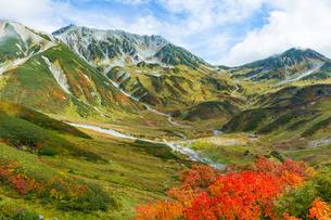 雷鳥沢 日本 富山県 立山町の写真素材 [FYI03392110]