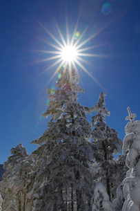 八ヶ岳 日本 山梨県 北杜市の写真素材 [FYI03392118]