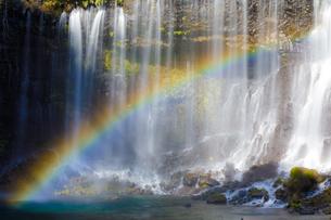 白糸の滝 日本 静岡県 富士宮市の写真素材 [FYI03392121]