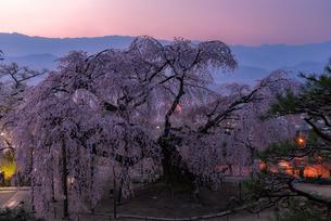 麻績の里 舞台桜 日本 長野県 飯田市の写真素材 [FYI03392378]