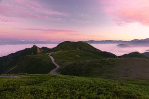 乗鞍 大黒岳からの夜明け 日本 岐阜県 高山市の写真素材 [FYI03392393]