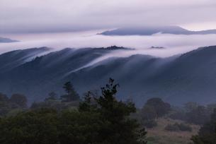 茶臼山高原からの雲海 日本 愛知県 設楽町の写真素材 [FYI03392395]