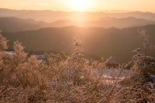 茶臼山山頂より 日本 愛知県 設楽町の写真素材 [FYI03392405]