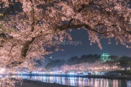 岡崎公園 日本 愛知県 岡崎市の写真素材 [FYI03392411]