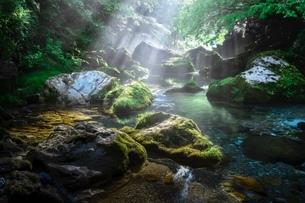 円原川 日本 岐阜県 山県市の写真素材 [FYI03392422]