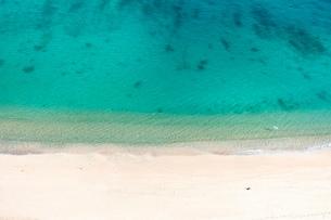 朝のビーチと鳥 日本 沖縄県 名護市の写真素材 [FYI03392423]