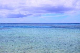 サンゴ礁の透ける海の写真素材 [FYI03392427]