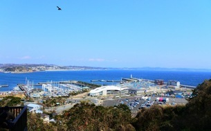 海の見える町の写真素材 [FYI03392429]