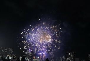 花火の写真素材 [FYI03392433]