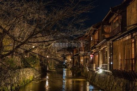 祇園白川 日本 京都府 京都市の写真素材 [FYI03392835]