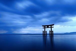白鬚神社 日本 滋賀県 高島市の写真素材 [FYI03392840]