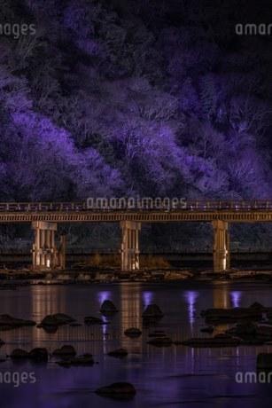 嵐山 日本 京都府 京都市の写真素材 [FYI03392920]