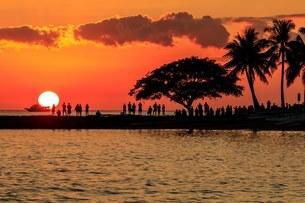 Waikiki Beach アメリカの写真素材 [FYI03392935]