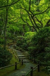 大河内山荘 日本 京都府 京都市の写真素材 [FYI03392941]