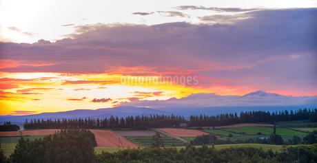 北海道 自然 風景 パノラマ 田園風景と朝焼けの写真素材 [FYI03392986]