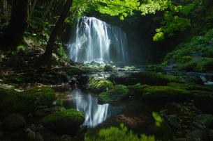 達沢不動滝 日本 福島県 猪苗代町の写真素材 [FYI03393044]