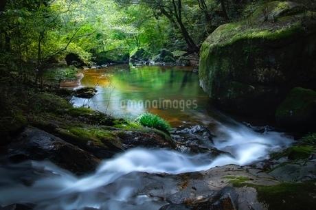 竜吟の滝 日本 岐阜県 瑞浪市の写真素材 [FYI03393053]