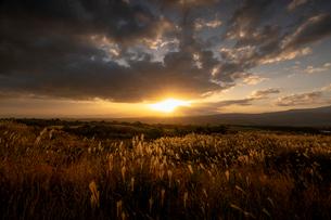 にかほ高原の朝 日本 秋田県 にかほ市の写真素材 [FYI03393056]