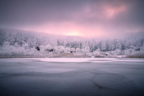 聖高原 日本 長野県 東筑摩郡の写真素材 [FYI03393061]