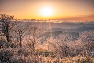 茶臼山高原 の写真素材 [FYI03393065]