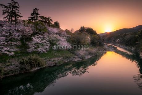 桜淵公園 日本 愛知県 新城市の写真素材 [FYI03393073]