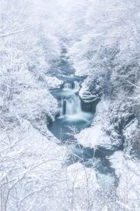 鳳鳴四十八滝 日本 宮城県 仙台市の写真素材 [FYI03393078]