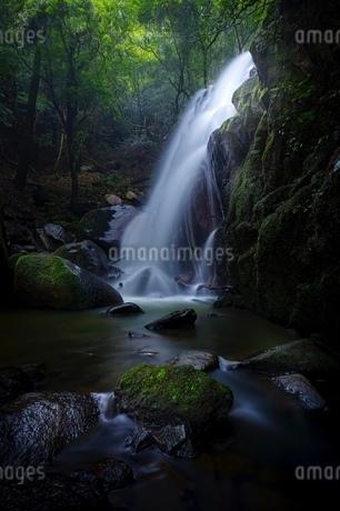 鶏鳴の滝 日本 滋賀県 甲賀市の写真素材 [FYI03393080]
