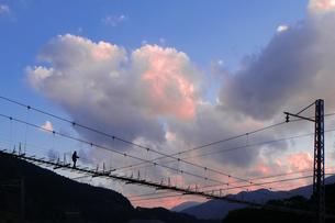 塩郷の吊り橋 日本 静岡県 榛原郡の写真素材 [FYI03393124]