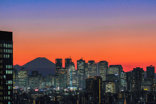 文京シビックセンター展望ラウンジからの眺め 日本 東京都の写真素材 [FYI03393126]