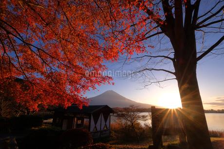 田貫湖 日本 長野県 飯田市の写真素材 [FYI03393131]