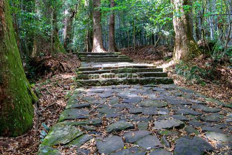 熊野古道の写真素材 [FYI03393143]