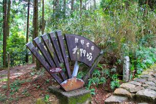 熊野古道の写真素材 [FYI03393145]
