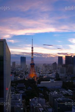 世界貿易センタービル 日本 東京都 港区の写真素材 [FYI03393182]