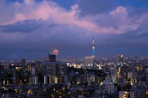 花火とスカイツリー 日本 東京都 文京区の写真素材 [FYI03393192]