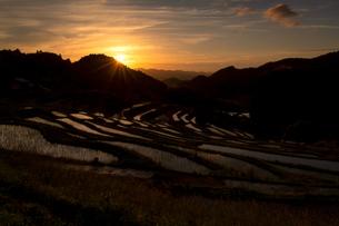 大山千枚田 日本 千葉県 鴨川市の写真素材 [FYI03393265]
