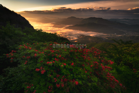 三つ峠山頂付近 日本 山梨県 西桂町の写真素材 [FYI03393269]