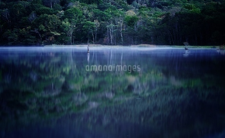 戸隠 鏡池 日本 長野県 長野市の写真素材 [FYI03393344]