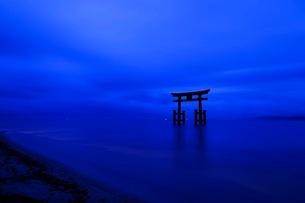 白髭神社 日本 滋賀県 高島市の写真素材 [FYI03393354]