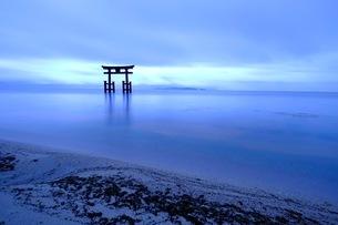 白髭神社 日本 滋賀県 高島市の写真素材 [FYI03393355]